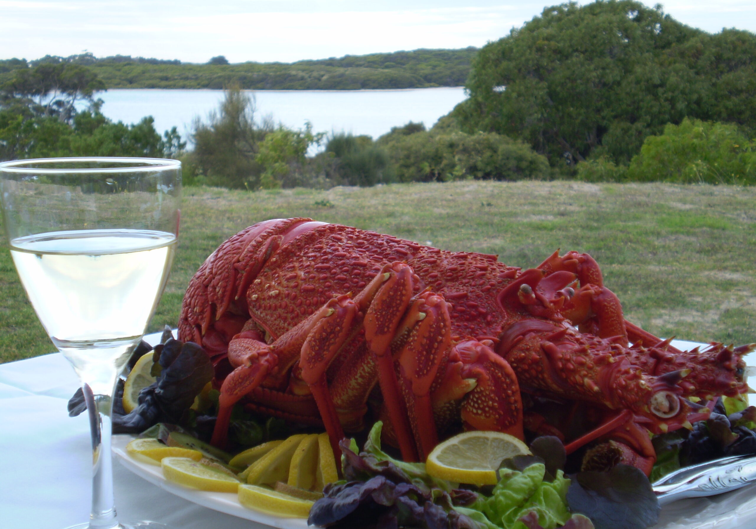 Enjoy Crayfish and Wine with a view over the lake at Robe